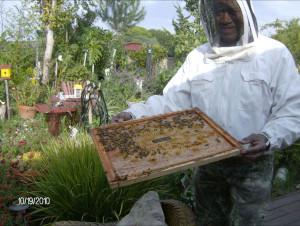 BeekeepingClass1
